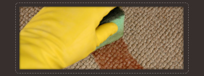 carpet cleaning La Vergne,TN