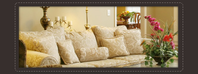 upholstered furniture cleaning La Vergne,TN