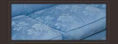 upholstery cleaning Nashville,TN